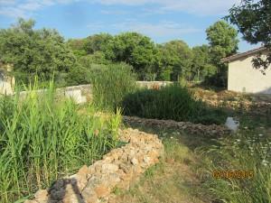 Bassin d'assainissement pour les sanitaires